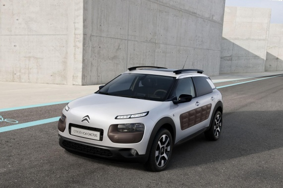 Level Down for Citroen to Keep Alive