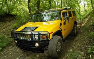 Hummer goes for sale