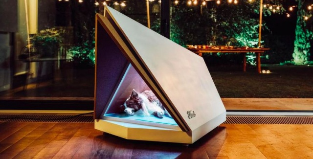 Ford has prepared an innovative doghouse