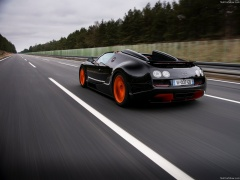 Veyron Grand Sport Vitesse WRC photo #140253