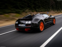 Veyron Grand Sport Vitesse WRC photo #140254