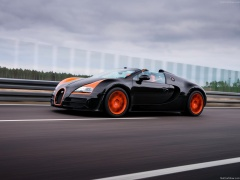 Veyron Grand Sport Vitesse WRC photo #140257