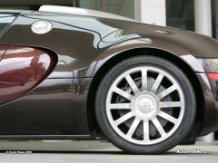 Veyron photo #28492