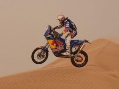 KTM 690 Rally pic
