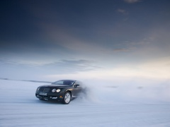 bentley continental gt pic #60426
