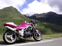 triumph speed triple pic #22872