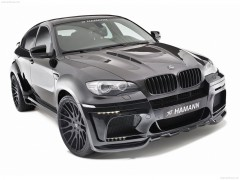 BMW X6 Tycoon Evo M photo #72448