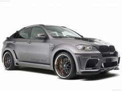 BMW X6 Tycoon Evo M photo #79313