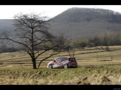 citroen ds3 r3 pic #122254
