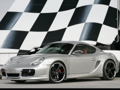 Techart Porsche Cayman pic