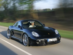 Porsche Cayman S photo #35320