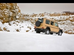 mercedes-benz g-class edition30 pic #61514