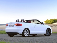audi a3 cabriolet pic #96436