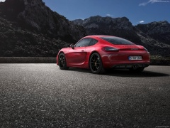Cayman GTS photo #113831