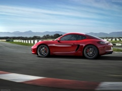 Cayman GTS photo #113832