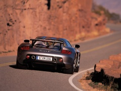 Carrera GT photo #8512