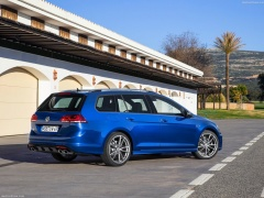 Golf R Variant photo #139819