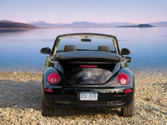 New Beetle Convertible photo #49998