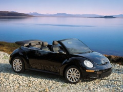 New Beetle Convertible photo #50000