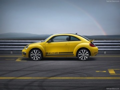 Beetle R photo #98713