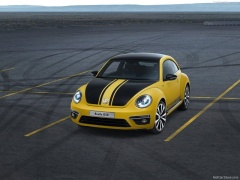 Beetle R photo #98715