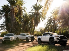 4Runner TRD Pro photo #186226