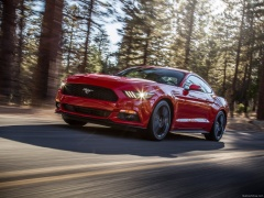 ford mustang ecoboost pic #129808