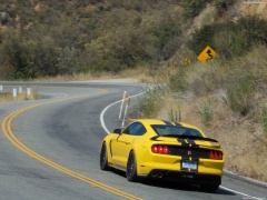 ford mustang shelby gt350r pic #149188