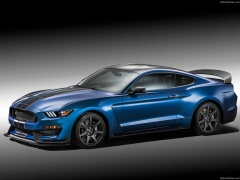 Mustang Shelby GT350R photo #149201