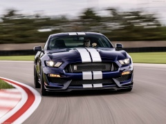ford mustang shelby gt350 pic #188966