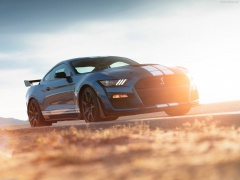 ford mustang shelby gt500 pic #192986