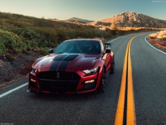 ford mustang shelby gt500 pic #192989