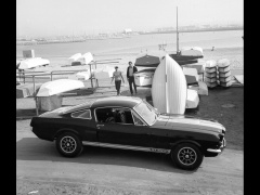 Mustang Shelby photo #33579