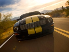 Mustang Shelby photo #33582