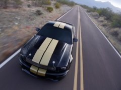ford mustang shelby pic #33587
