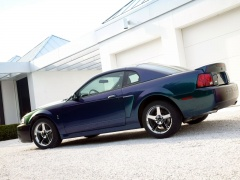 ford mustang cobra pic #3365