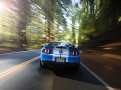 Mustang Shelby GT500 photo #60620