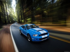Mustang Shelby GT500 photo #60626