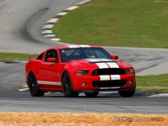 ford mustang shelby gt500 pic #92047