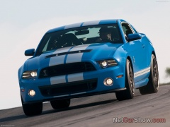 ford mustang shelby gt500 pic #92048