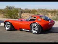 cheetah coupe pic #54617
