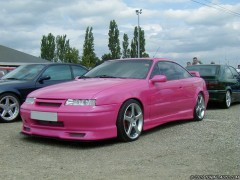 Calibra photo #1310